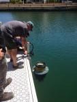 Rex installing a seabin